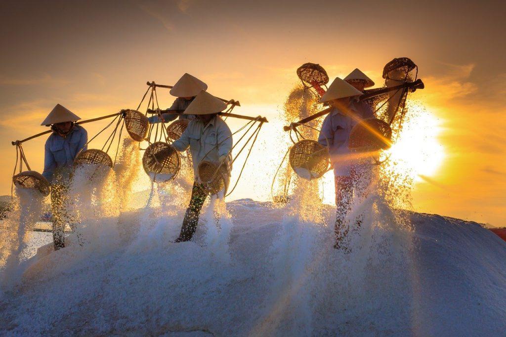 salt, field, province